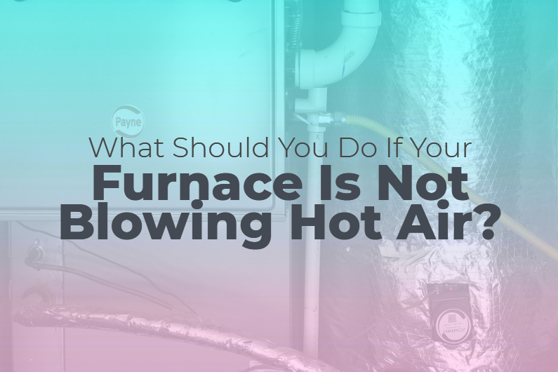 What Should You Do If Your Furnace Is Not Blowing Hot Air?